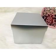Karton Kutu Gümüş 20x20x16